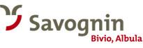 LogoFerienregion Savognin Bivio Albula erleben